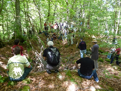 Journées régionales de l'archéologie Auvergne - Motte sicaud