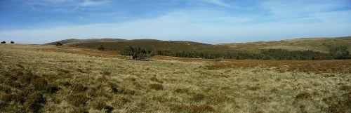 Panorama sur les landes des Hautes Chaumes