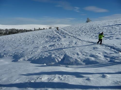 raquettes a neige dans le forez hautes chaumes guide nature randonnee