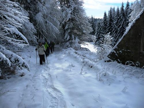 raquettes a neige dans le forez vallée des reblats guide nature randonnee