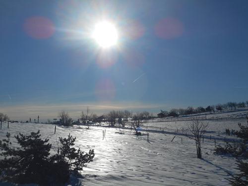 Raquettes à neige sur le forez (4)