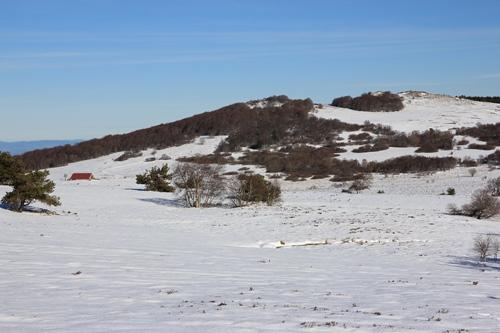 Raquettes à neige sur le forez (7)