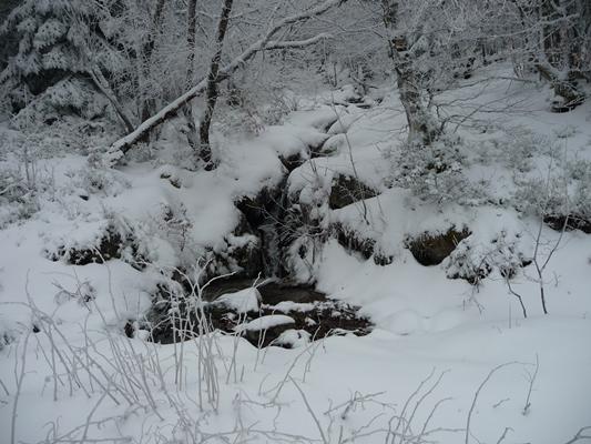 Un ruisseau sur le chemin