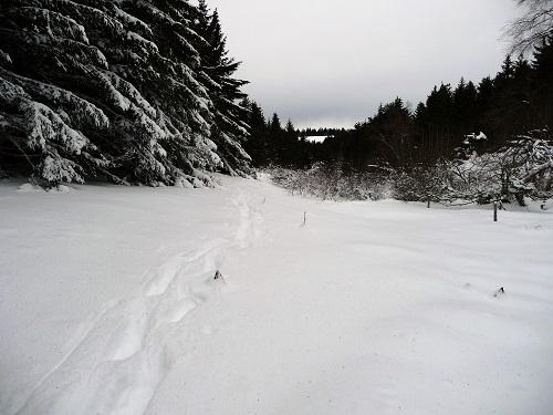 Un vallon bien dégagé et fourni en neige !